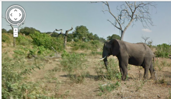 Google Street View in Afrika Olifant